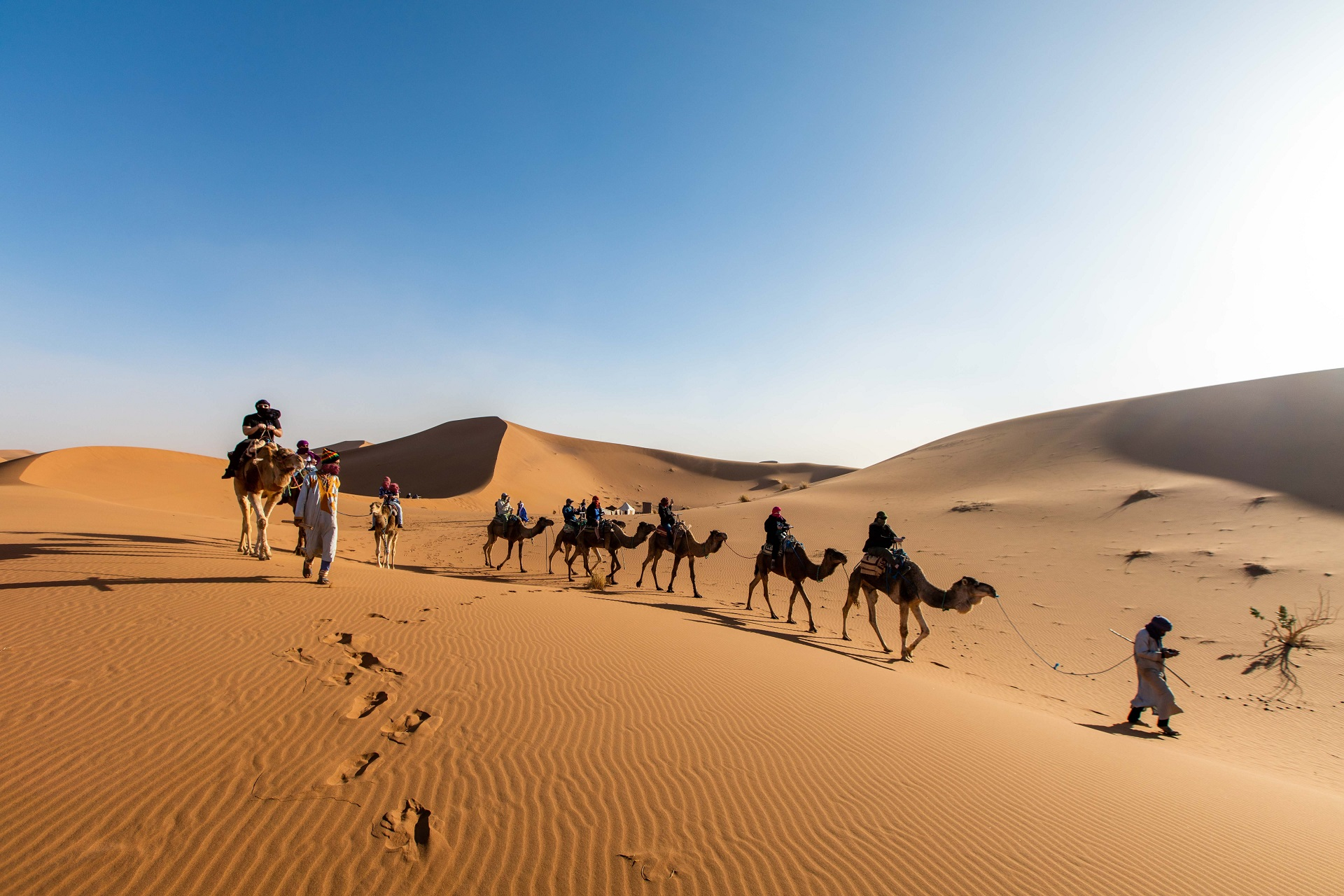 caravan-camels-with-guide-sails-across-desert-morocco