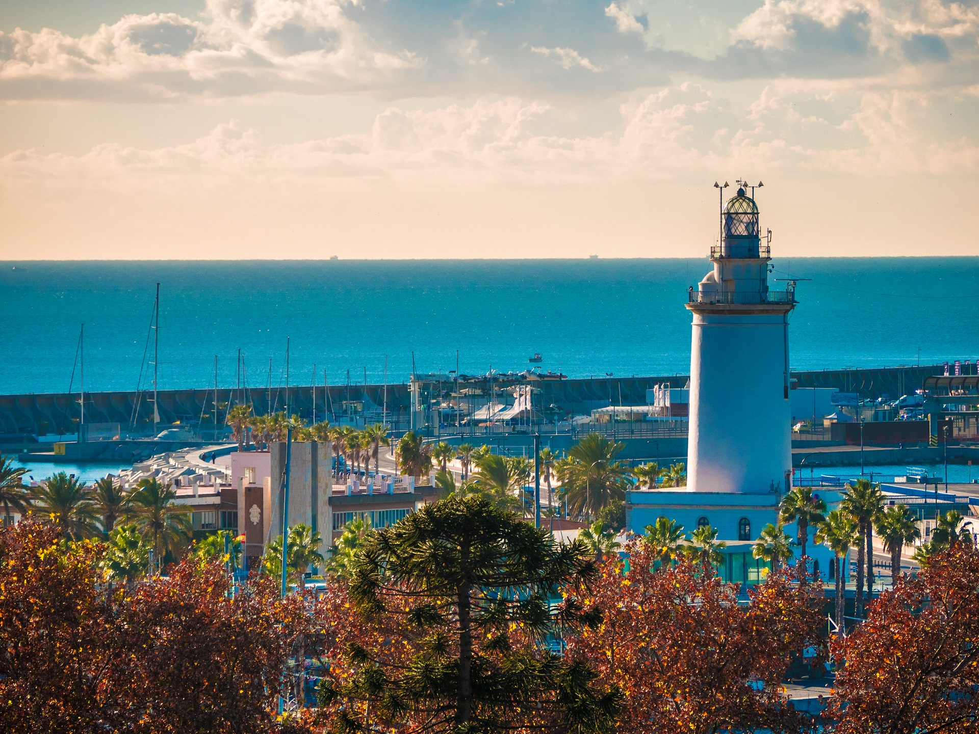 view-malaga-port-with-some-trees-foreground